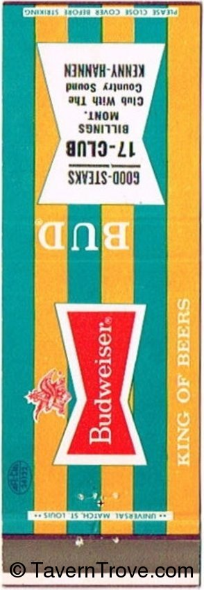 Budweiser Beer (Yellow/Teal)