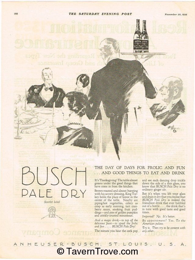 Busch Pale Dry Ginger Ale